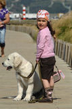 Little girl with a Golden retriever Stock Image