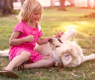 Little girl with golden retriever dog Stock Photos