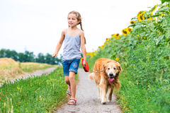 Little girl with golden retriever Stock Photography