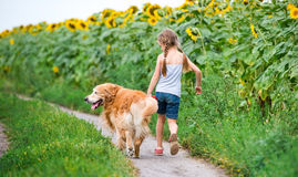 Little girl with golden retriever Royalty Free Stock Photo