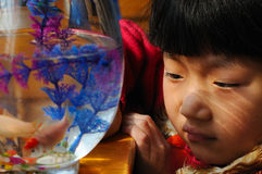 Little girl and goldfish royalty free stock photo