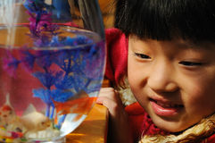 Little girl and goldfish Stock Photo