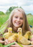 Little girl with goslings Stock Photo