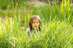 Little girl in the grass Royalty Free Stock Images