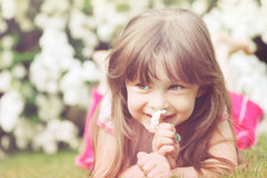 Little girl in grass Stock Photography
