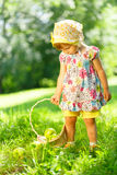 Little girl on grass with basket of apples Royalty Free Stock Photography