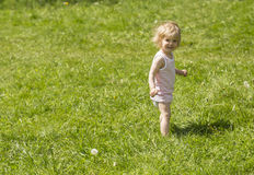 Little girl in the grass Royalty Free Stock Image