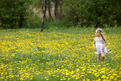 Little girl on grass in flower. Stock Images