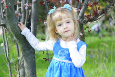 Little girl on green grass in spring with flowering tree Stock Photo