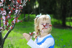 Little girl on green grass in spring with flowering tree Royalty Free Stock Photos