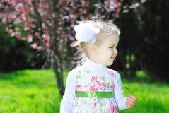 Little girl on a green meadow in a beautiful dress Stock Image