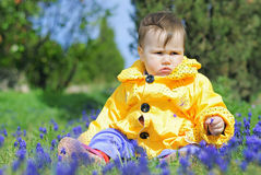 Little girl on a green meadow in a bright yellow jacket Stock Images