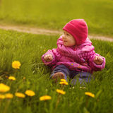 Little girl on a green meadow Stock Image