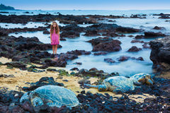 Little girl and green sea turtles Royalty Free Stock Images