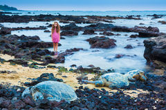Little girl and green sea turtles Royalty Free Stock Photos