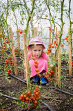 Little girl in greenhouse Stock Photos