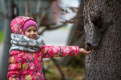 Little girl with hand feeding a squirrel in the Park. Love. Little girl with hand feeding a squirrel in the Park Stock Photo