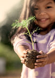 Little girl  hand holding young tree for prepare plant on ground Stock Photography