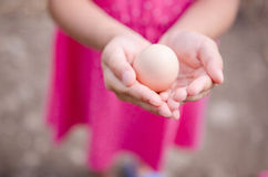 Little girl hands with chicken egg Stock Photos