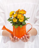 Little girl hands with flowers Stock Photography