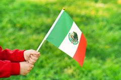 Little girl hands hold Mexico flag. Hands of kid girl holding Mexico flag. Independence Day concept. Green grass background stock photos