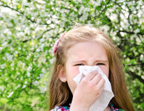 Little girl has allergy to spring blossoming. And blowing her nose outdoor Royalty Free Stock Images