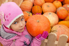 Little girl has got pumpkin from box Royalty Free Stock Photo