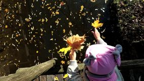 Little girl with hat throw vivid colorful leaves in river water. Child on bridge. Look at camera. Handheld motion shot stock footage