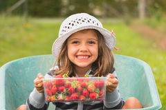 Little girl with hat who picking strawberries. Little girl with a white hat who picking strawberries Royalty Free Stock Images