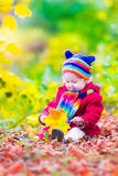 Little girl having fun in an autumn park Stock Image