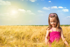 Little girl having fun in the wheat field Stock Photography