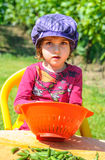 Little girl helping with vegetables in garden Royalty Free Stock Images