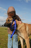 Little girl and her dog. Little girl kissing her purebred belgian shepherd malinois Stock Image