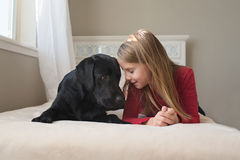 Little girl and her dog on the bed. Stock Images