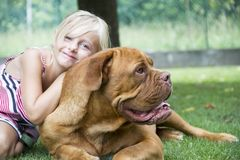 Best friends girl and dog Stock Photos