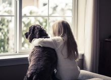 Little girl and her dog looking out the window. Stock Photos