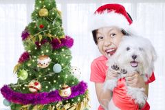 Little girl with her dog near Christmas tree. Cheerful little girl is playing with her Maltese dog while standing near a Christmas tree. Shot at home Stock Image