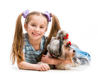 Little girl is with her dog Yorkshire Terrier Stock Photos