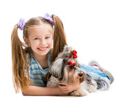 Little girl is with her dog Yorkshire Terrier Stock Image