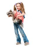 Little girl is with her dog Yorkshire Terrier Royalty Free Stock Photography