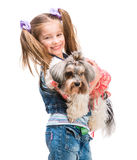 Little girl is with her dog Yorkshire Terrier Stock Images