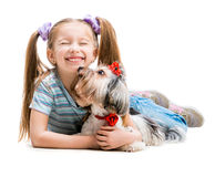 Little girl is with her dog Yorkshire Terrier Royalty Free Stock Images