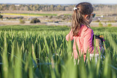 Little girl and her doll walking through green cereal field at s Royalty Free Stock Photography