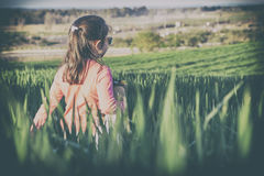 Little girl and her doll walking through green cereal field at s Stock Photo