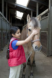 Little girl with her favorite horse Stock Photography