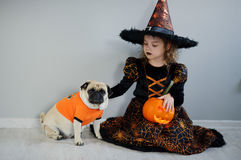 Little girl and her friend - pug are dressed in suits for Halloween. All Hallows Eve. Little girl in a suit of the evil sorcerer sits on a floor and irons an royalty free stock photo