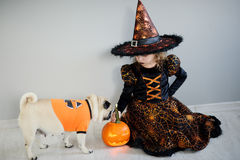 Little girl and her friend - pug are dressed in suits for Halloween. Girl in an image of sorcerer sits on a floor. On a doggie have put on an orange sweater stock photo