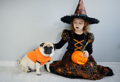 Little girl and her friend - pug are dressed in suits for Halloween. Girl in an image of sorcerer sits on floor. On a doggie have put on an orange sweater. The Stock Image