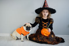 Little girl and her friend - pug are dressed in suits for Halloween. Girl in an image of sorcerer sits on floor. On a doggie have put on an orange sweater. The royalty free stock photography