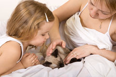 Little girl and her mother stroking a kitten Royalty Free Stock Photo